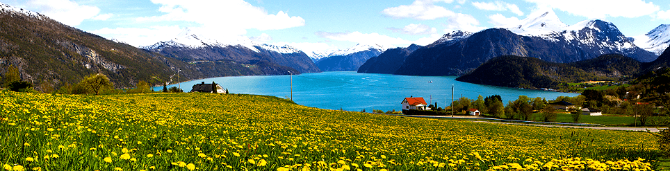 Car rental Alesund