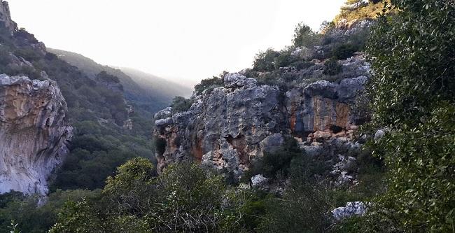 Haïfa, Mont Carmel