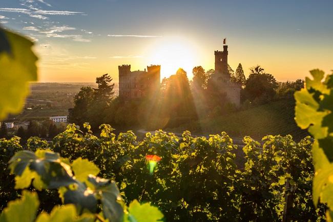 Offenbourg, Schloss Ortenberg