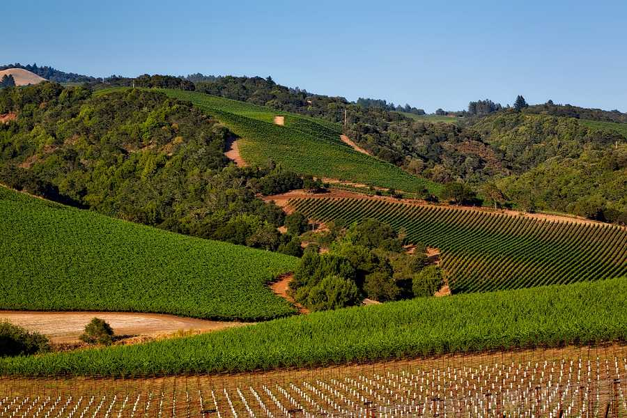 Visit California Wine Country with Sixt rent a car in Santa Rosa.