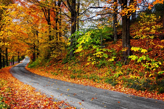 scenic drive through fall foliage